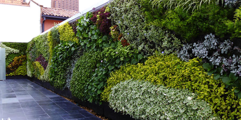 Jard nes verticales una nueva tendencia green city for Plantas artificiales jardin vertical