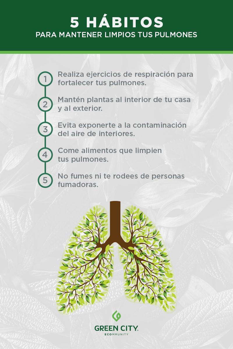 aire limpio, mantener limpios tus pulmones, habitos