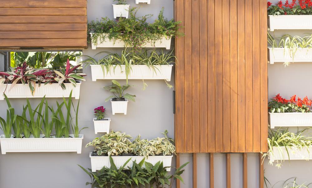 jardín_vertical_casa_pasos_instrucciones_jardines